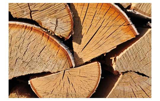 עץ להסקה יבש עם סדקים